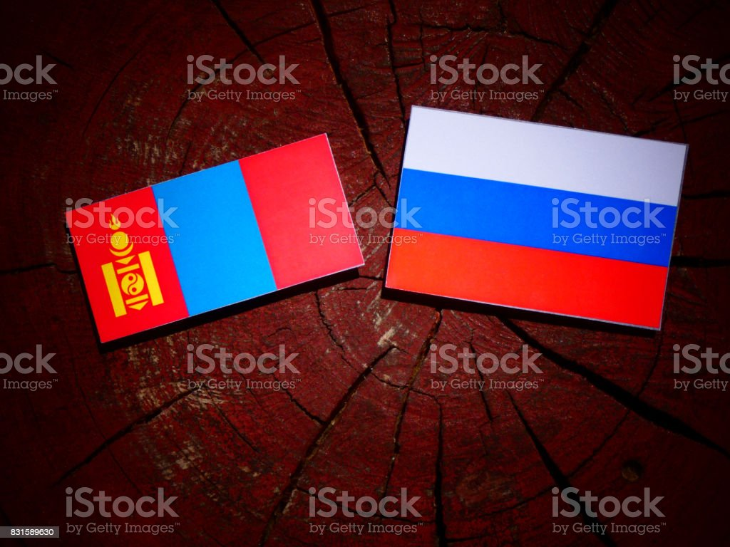 Mongolian flag with Russian flag on a tree stump isolated stock photo