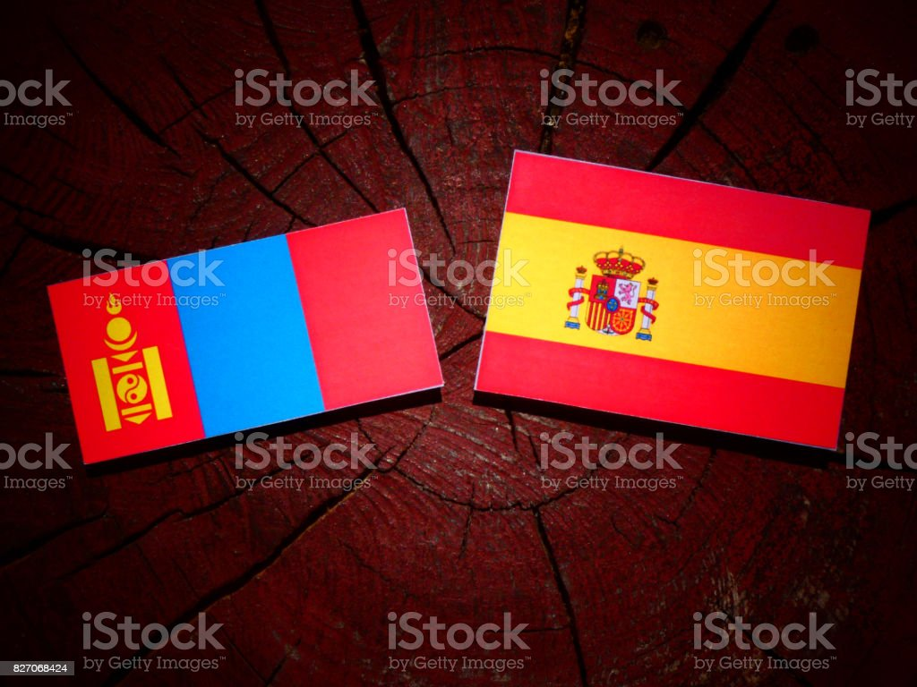 Mongolian flag with Spanish flag on a tree stump isolated stock photo