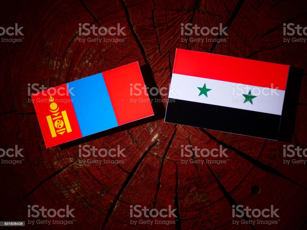 Mongolian flag with Syrian flag on a tree stump isolated stock photo