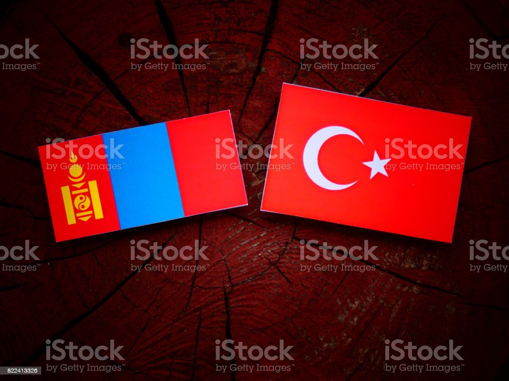 Mongolian flag with Turkish flag on a tree stump isolated stock photo