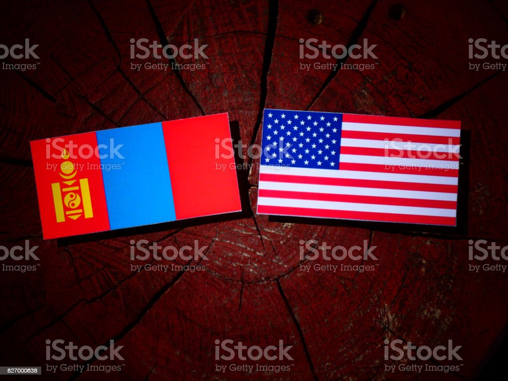 Mongolian flag with USA flag on a tree stump isolated stock photo