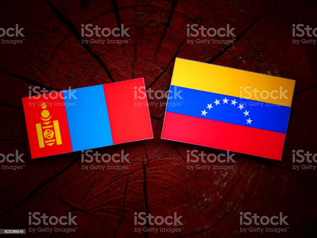 Mongolian flag with Venezuelan flag on a tree stump isolated stock photo