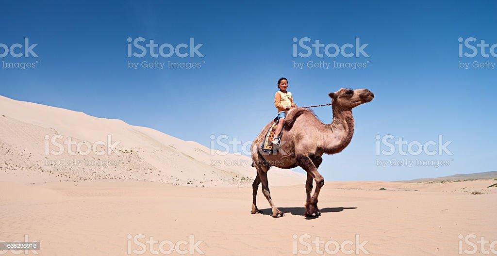 Mongolian girl riding on the camel, Gobi Desert stock photo