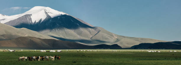mongolian landscape with horses and nomadic settlements - altai nature reserve стоковые фото и изображения