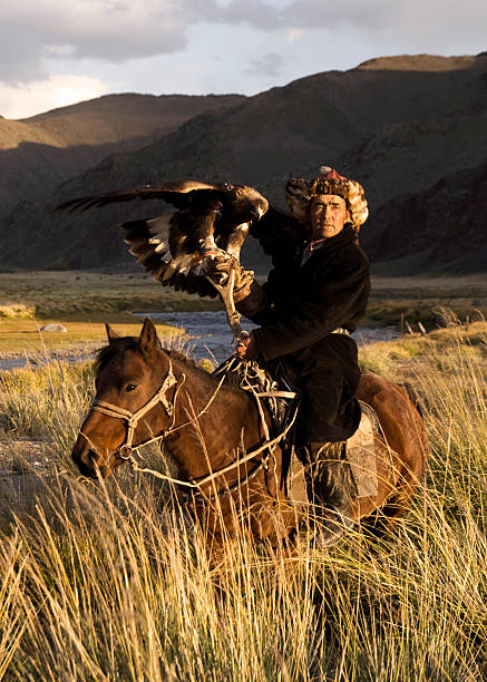 Mongolian Man with Trained Eagle  kazakhstan stock pictures, royalty-free photos & images