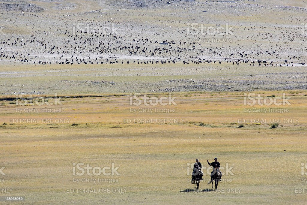 Mongolian Nomads riding in the steppe stock photo