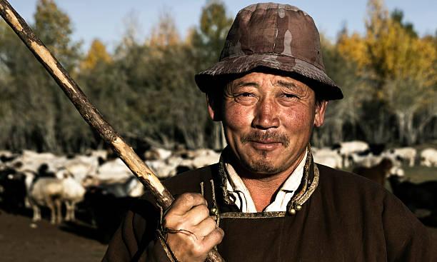 mongolische shepard mit herde - rawpixel stock-fotos und bilder
