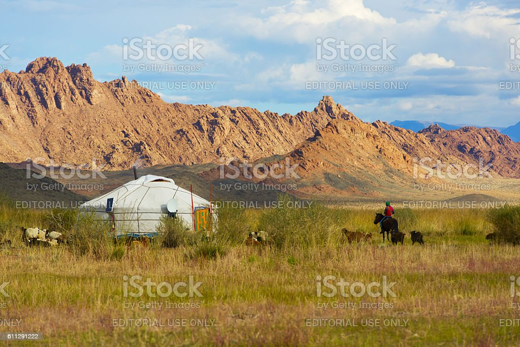 Mongolian shepherd stock photo