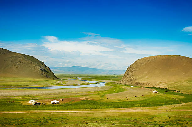 Mongolian steppe Mongolian steppe with grassland, yurts, horses and blue sky with white clouds steppe stock pictures, royalty-free photos & images