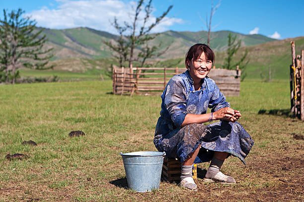 Mongolian woman in national clothing milking a yak Mongolian woman in national clothing milking a yak, Central Mongolia.http://bem.2be.pl/IS/mongolia_380.jpg mongolian culture stock pictures, royalty-free photos & images