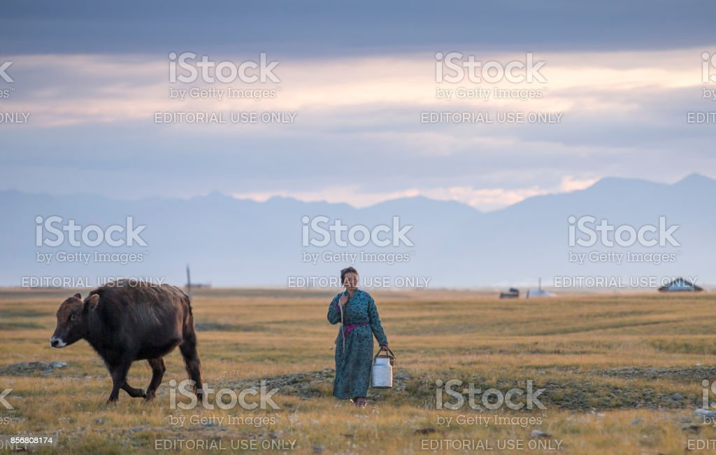 Mongolian woman on her way to milk cows stock photo