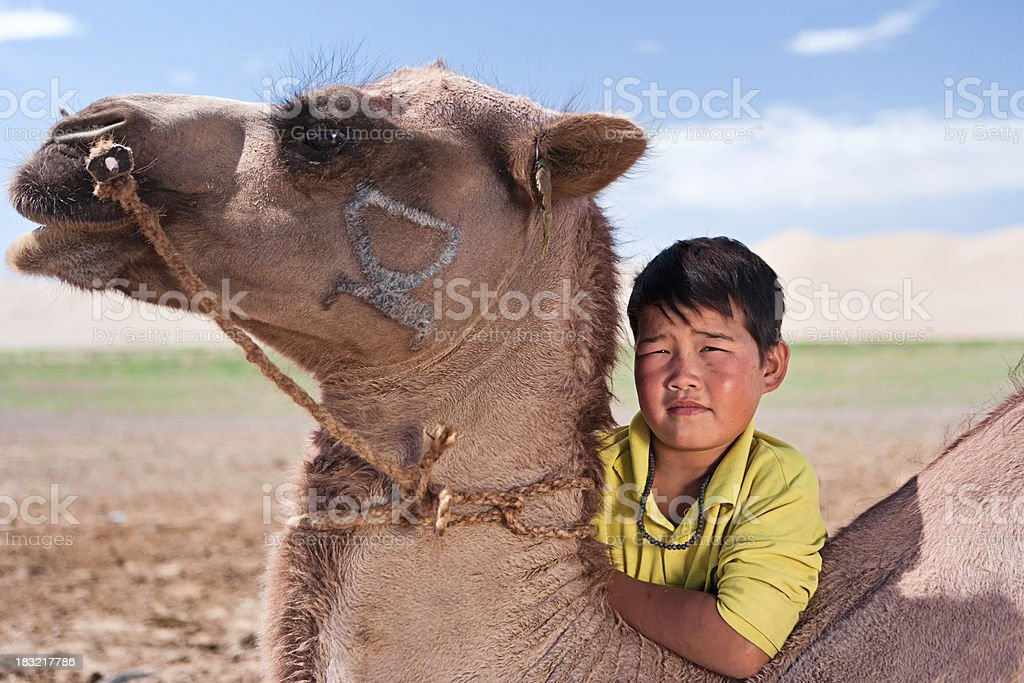 Mongolian young boy with camel royalty-free stock photo