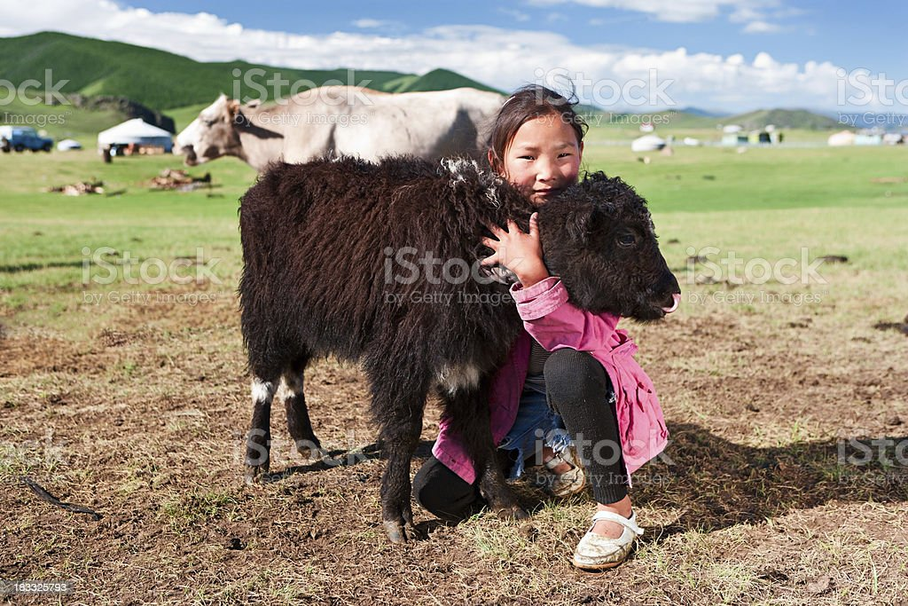 Mongolian young girl playing with yak stock photo