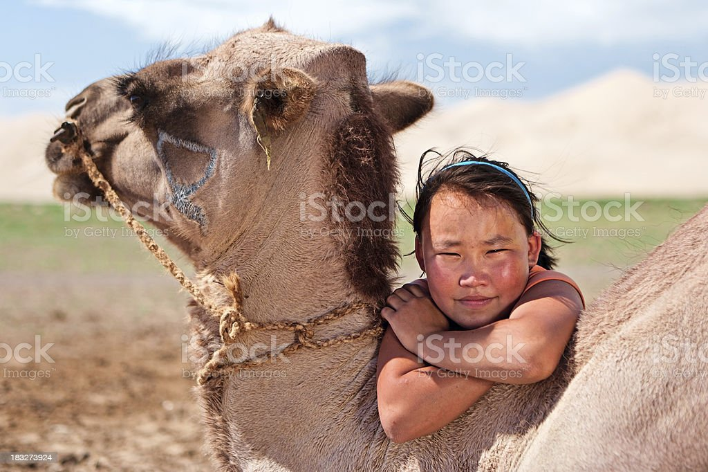 Mongolian young girl with camel stock photo