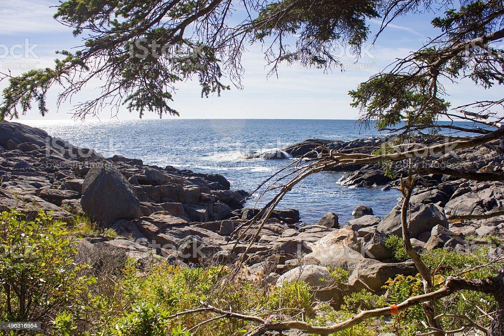 Monhegan Coastline royalty-free stock photo