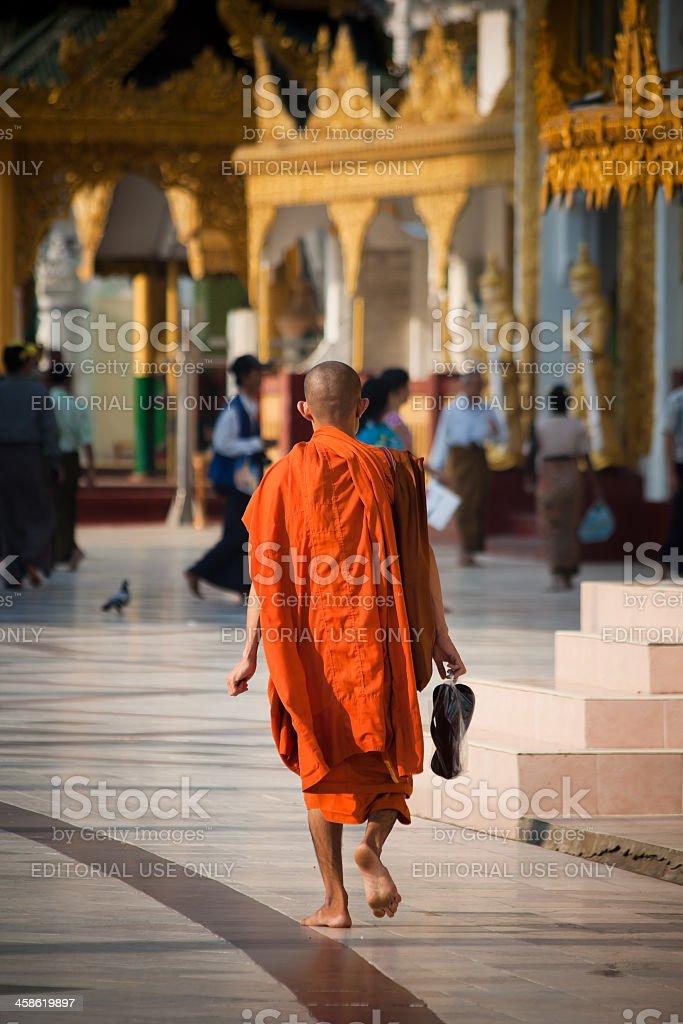 Monk at the Golden Shwedagon Pagoda, Myanmar royalty-free stock photo