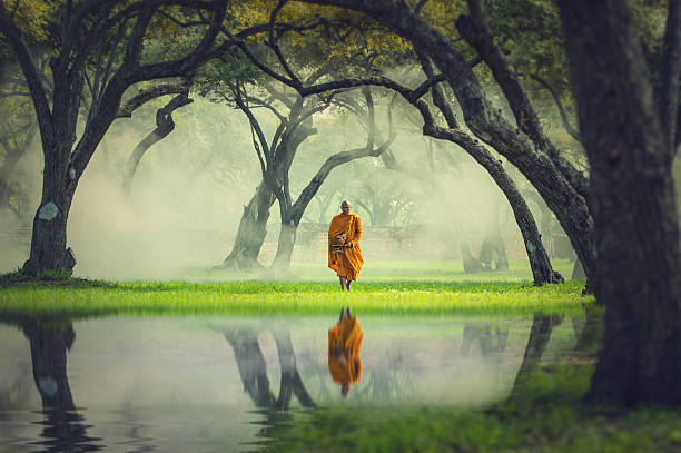 Monk hike in deep forest reflection with lake, Buddha Religion 스톡 사진