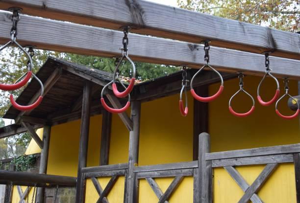 Affen-Bar-Ringe – Foto