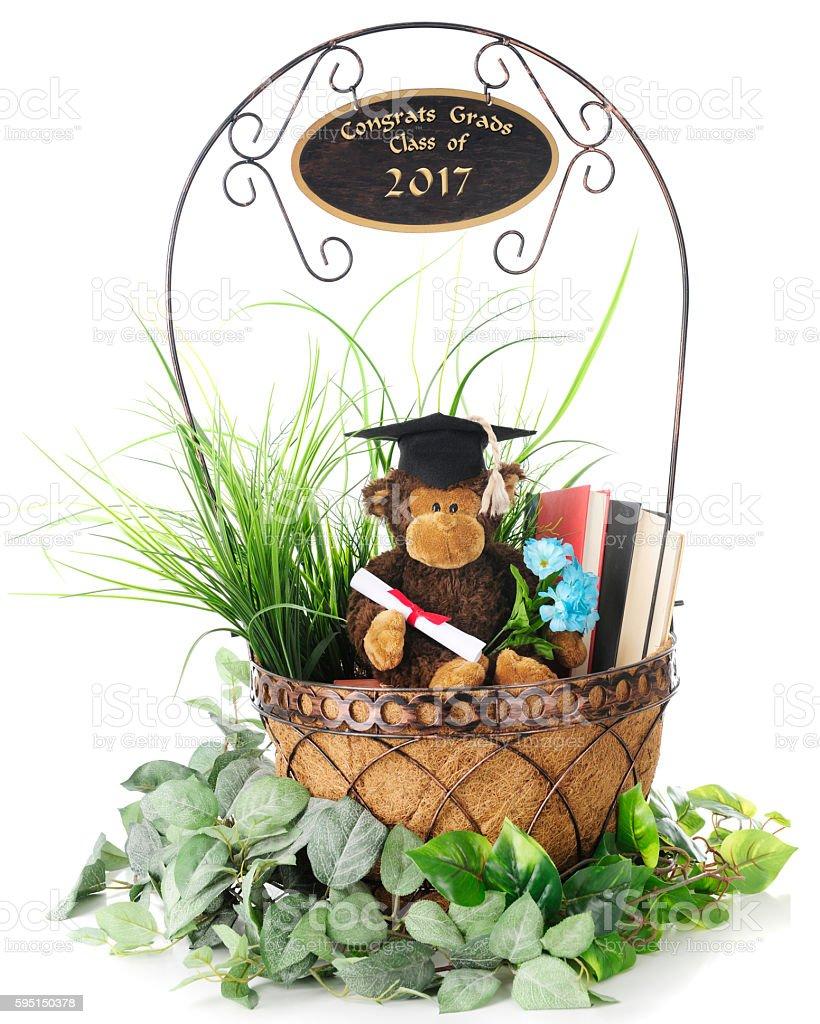 Monkey Grad - Class of 2017 - foto de stock