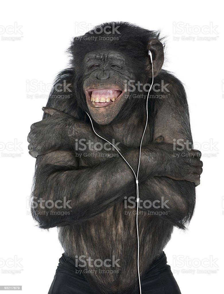 Monkey listening music stock photo