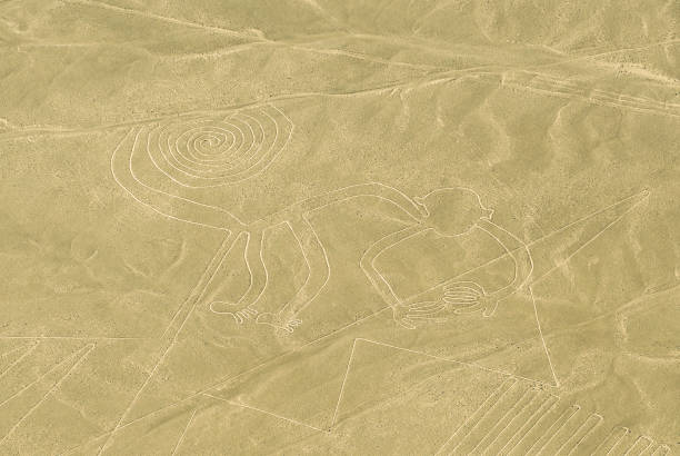 Monkey Nazca Lines, Peru The monkey figure drawing in the desert sand known as the Nazca Lines near the city of Nazca, Peru, South America. pisco peru stock pictures, royalty-free photos & images