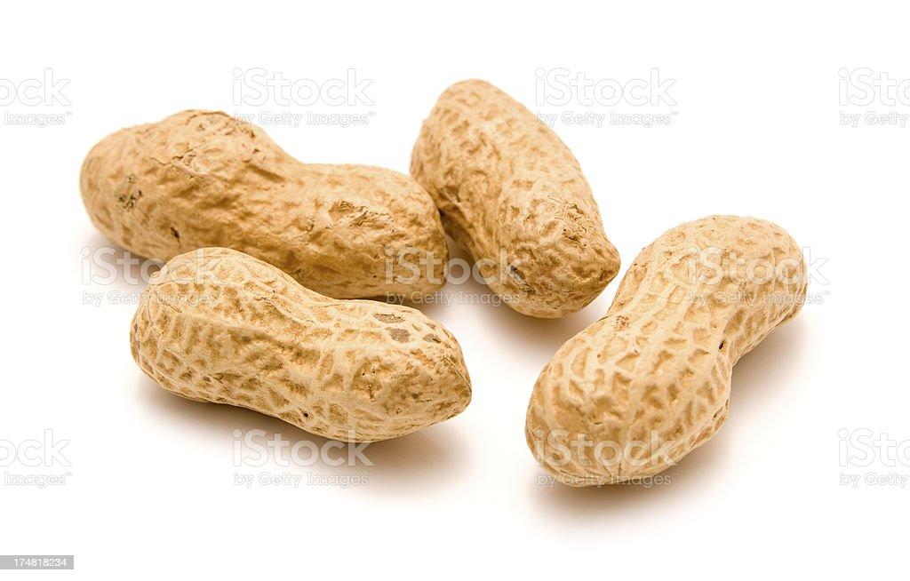 Monkey Nuts royalty-free stock photo
