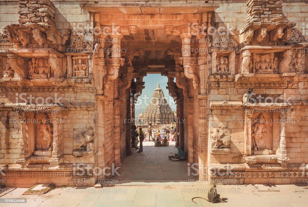 Monkey sitting at carved entrance gate of historical Chitaurgarh fort. Rajasthan. UNESCO world heritage site in India. stock photo