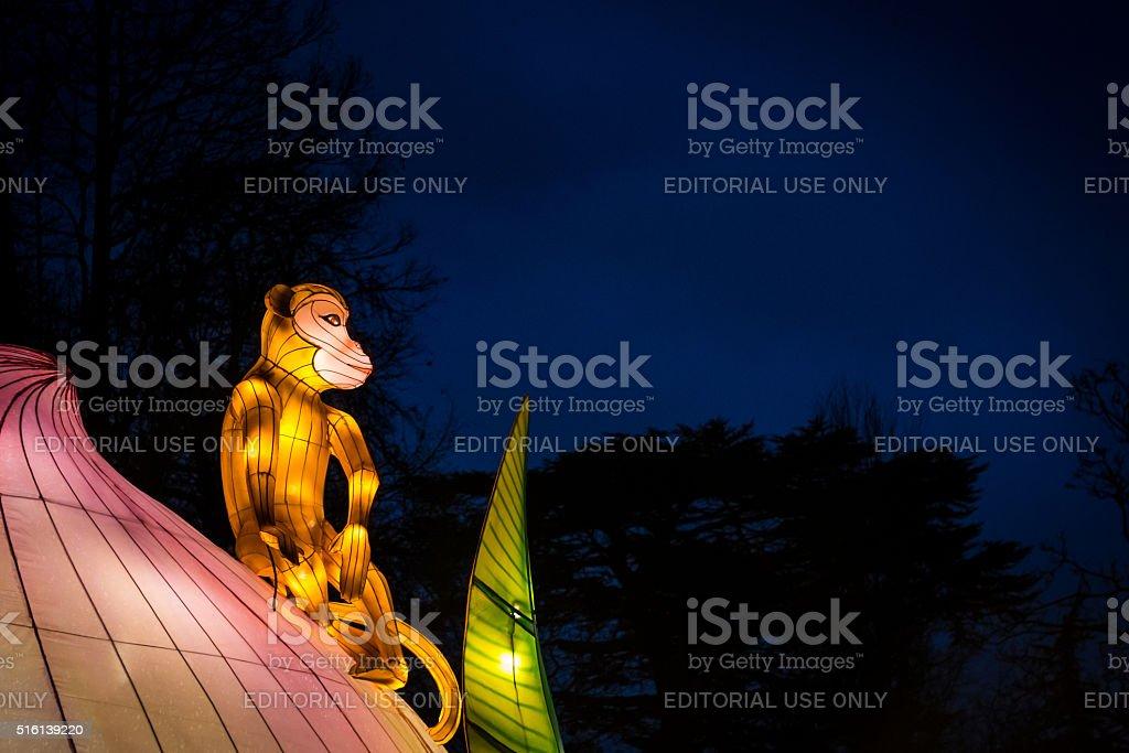 Monkey sitting on a lotus flower stock photo