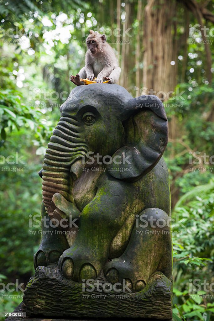 Monkey sitting on the statue in Monkey Forest, Bali royalty-free stock photo