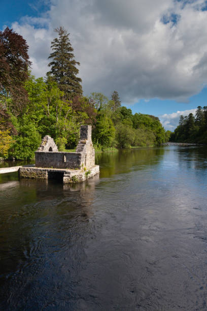 Monk's Fishing House, Cong Village, County Mayo, Ireland A 13th Century ruin on the Cong River, the Monk's Fishing House, part of Cong Abbey, set in a lush landscape with, in the distance, a weir across the river.  County Mayo, Ireland. michael stephen wills cong stock pictures, royalty-free photos & images