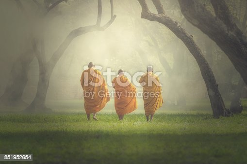 monks hike in deep forest, Buddha Religion concept