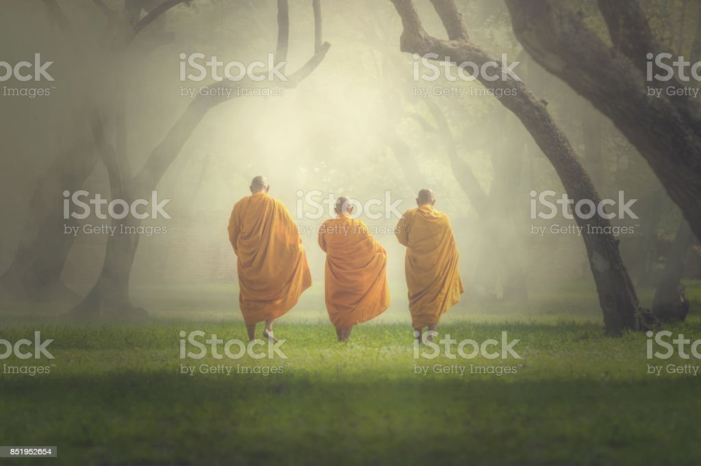 monks hike in deep forest, Buddha Religion concept stock photo