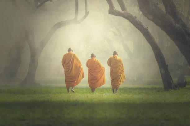 monjes caminata en bosque profundo, el concepto de la religión de buda - hermano fotografías e imágenes de stock