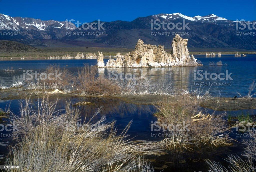 Mono Lake California Tufa Brush taken 2003 35mm Slide stock photo