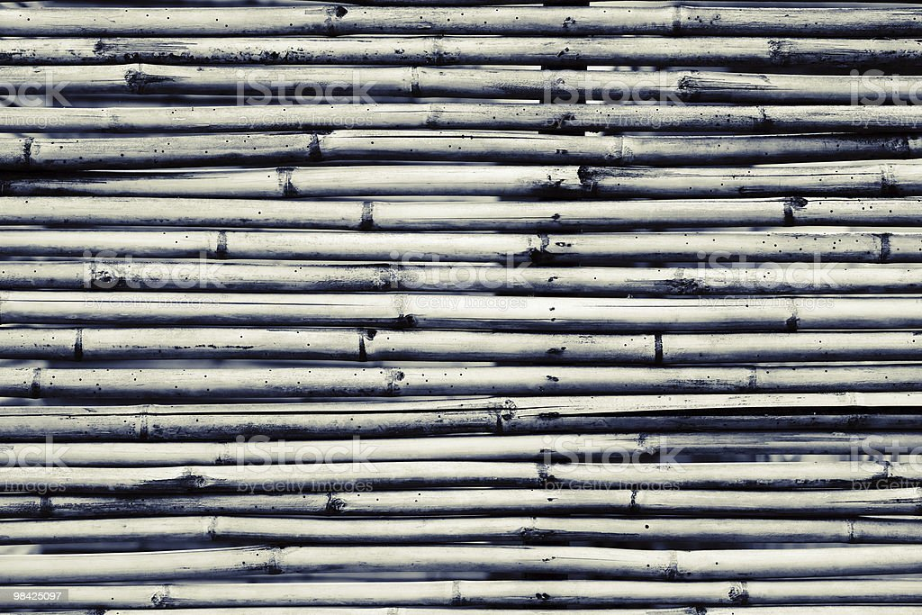 Monochrome bamboo background royalty-free stock photo