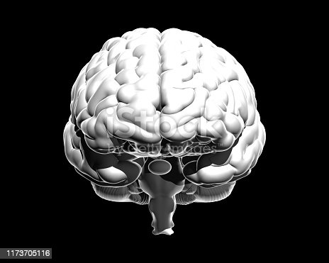 692684668istockphoto Monochrome human brain illustration isolated on dark BG 1173705116
