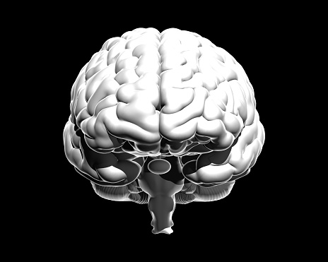 692684668 istock photo Monochrome human brain illustration isolated on dark BG 1173705116