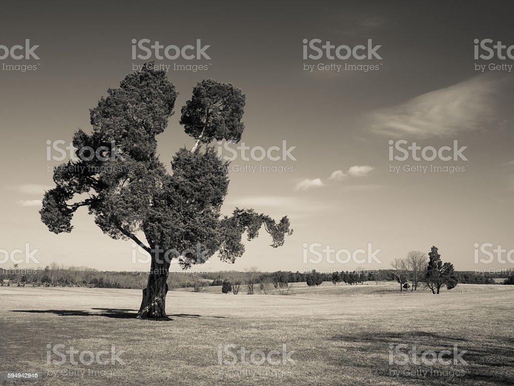 Monochrome of Manassas Battlefield stock photo