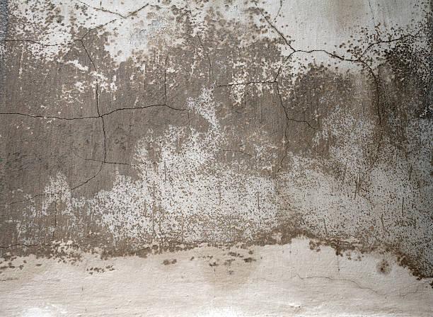 Monochrome textured, wall background stock photo