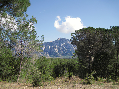 Monserrat Mountain Range View Between Trees
