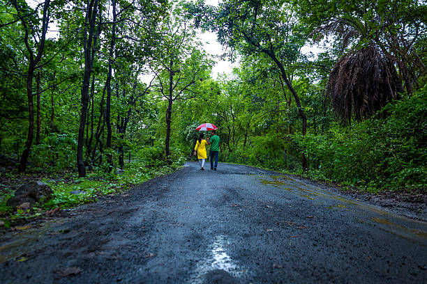 Monsoon Walk stock photo
