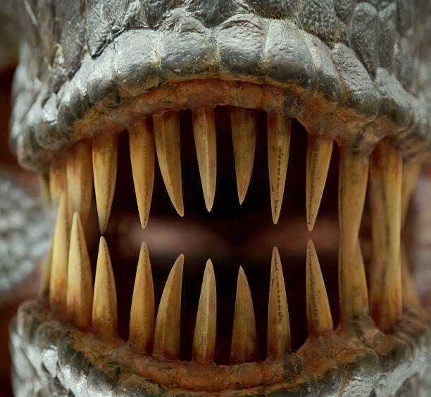 monster teeth - sharp stock photos and pictures