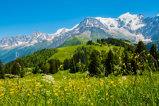 View of Mont Blanc from Col du Voza, Les Houches, France