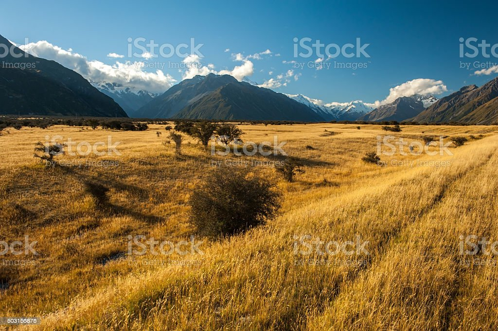 Mont Cook National Park stock photo