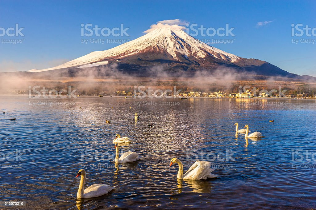 Mont Fuji at sunrise, Japan. stock photo