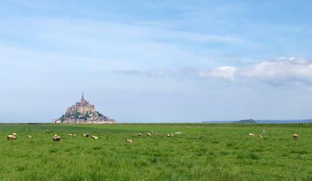 Mont Saint Michel sur la côte normande - Photo