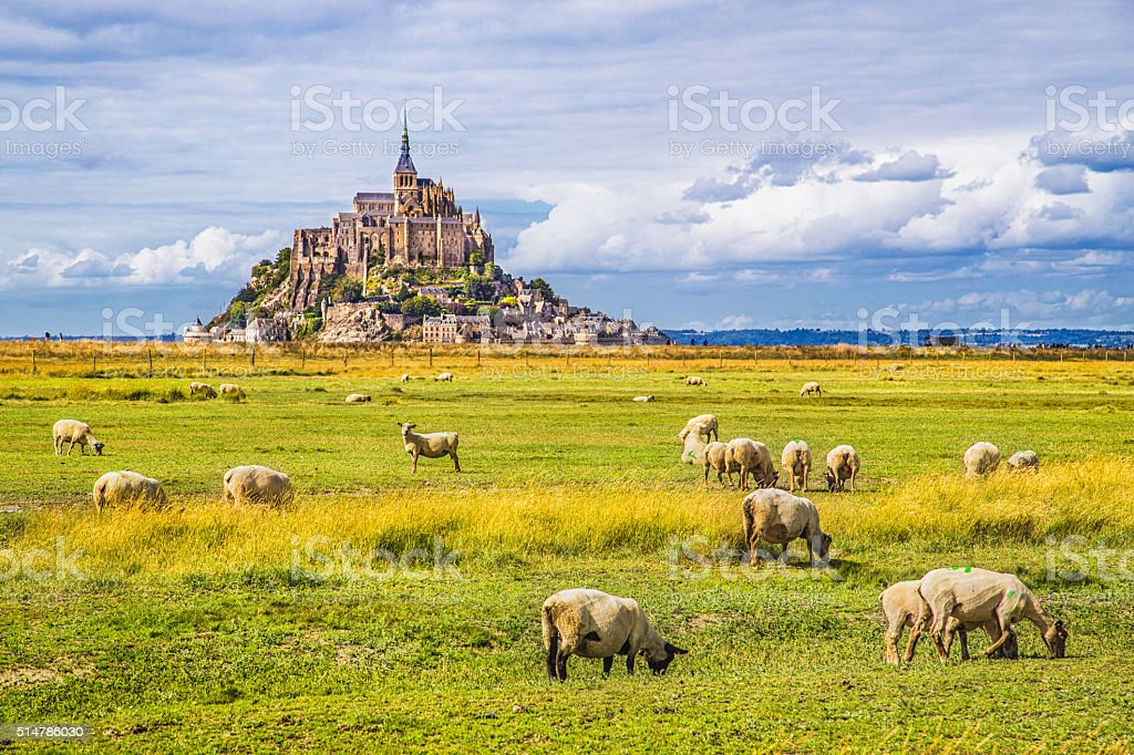 Mont Saint-Michel with sheep grazing on meadows, Normandy, France stock photo