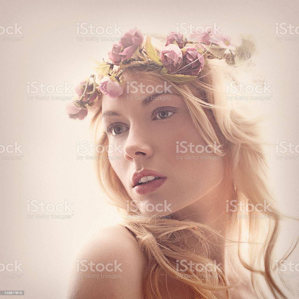 Montage of a beautiful lady in vintage beauty stock photo