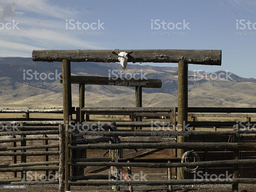 USA, Montana, Bozeman, gate leading into paddock stock photo
