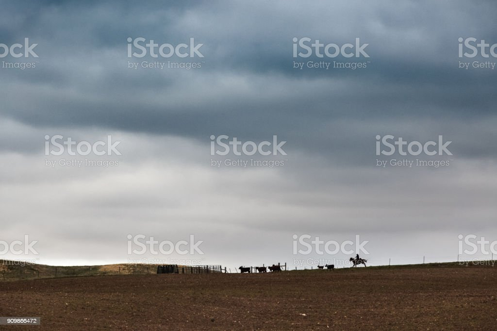 Montana cowboy rounding up cattle on the horizon under a stormy sky of ominous clouds stock photo